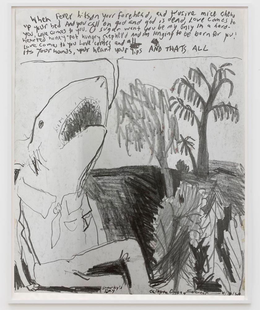 Celeste Dupuy-Spencer Sharky's Day, 2020 Pencil on paper 10 1/2 x 8 1/2 in 26.7 x 21.6 cm (CDS20.004)