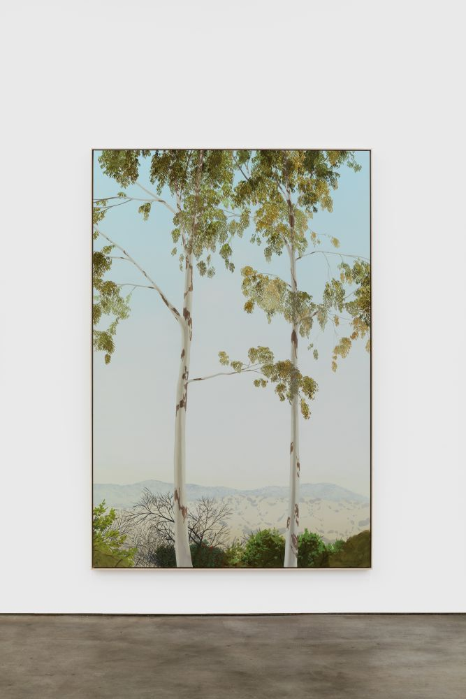 Jake Longstreth In Glendale (Eucalyptus 4), 2020 oil on muslin 84 x 57 in (85 x 57.25 in, framed) 213.4 x 144.8 cm (216 x 145.5 cm, framed) (JLO20.005)