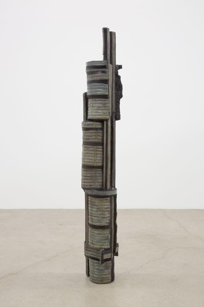 Anne Libby, Chameleon, 2020