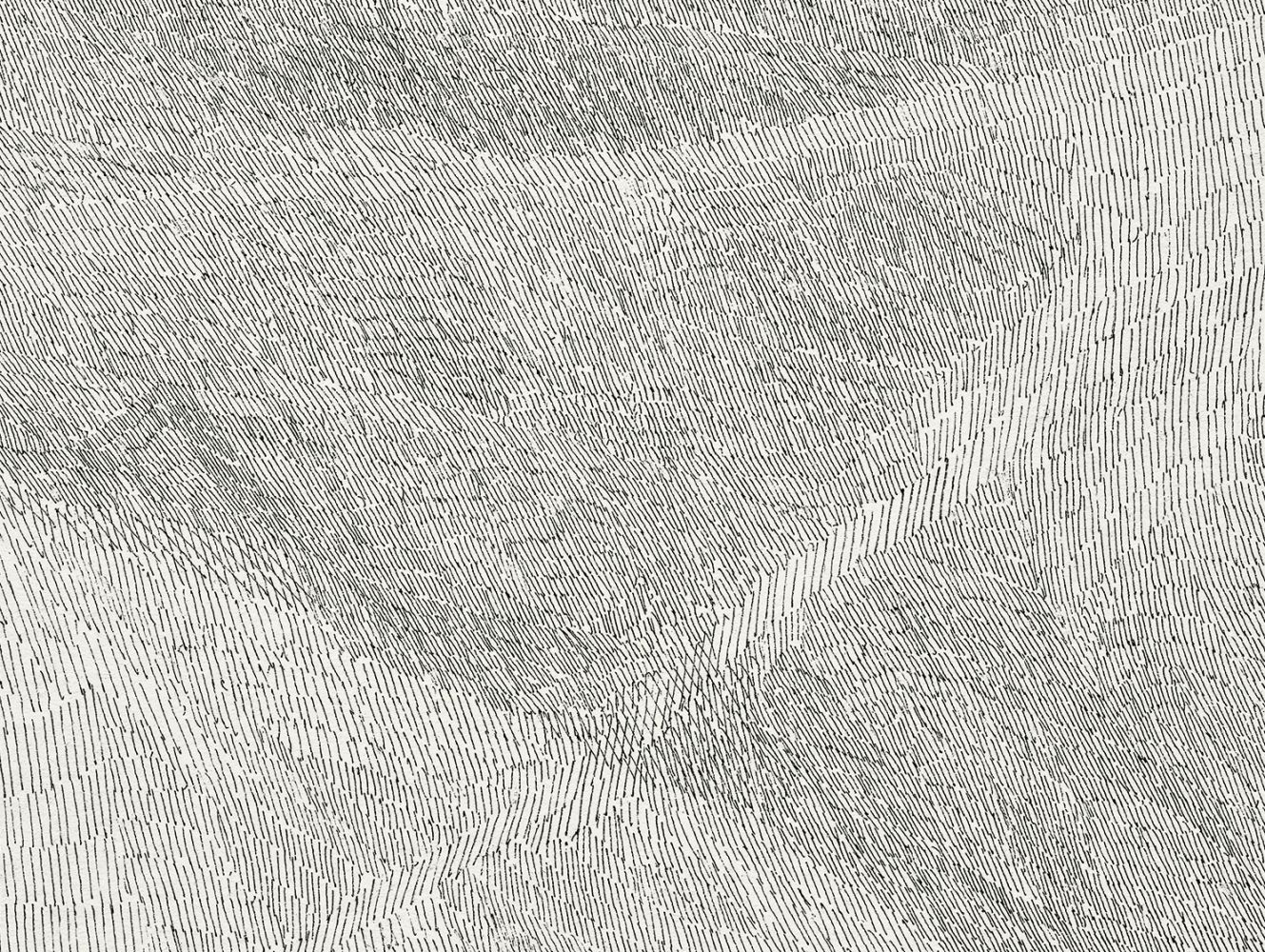 Detail of Linescape, 2012