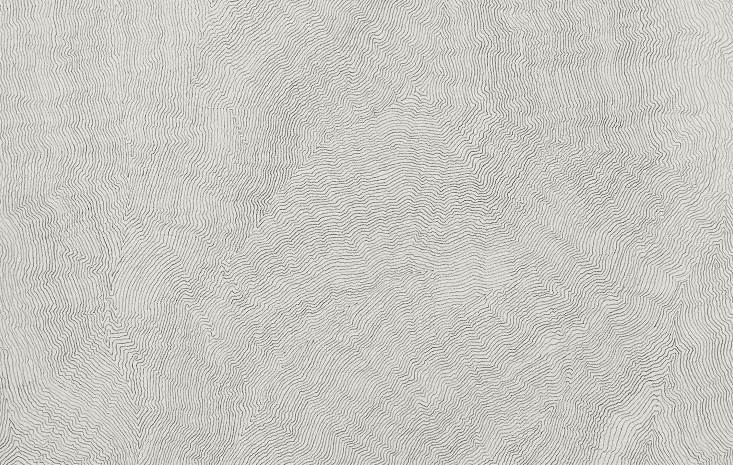 Detail of Linear Scenery, 2004-05