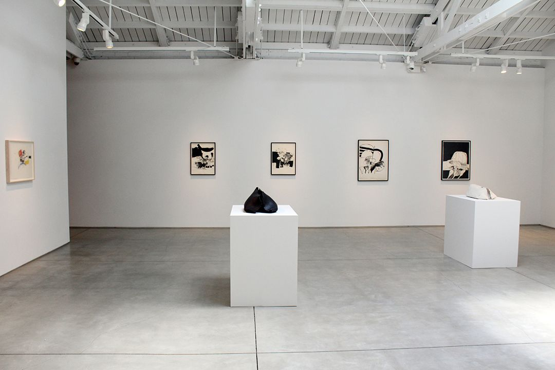 Hannah Wilke Drawings and Sculptures​, installation view