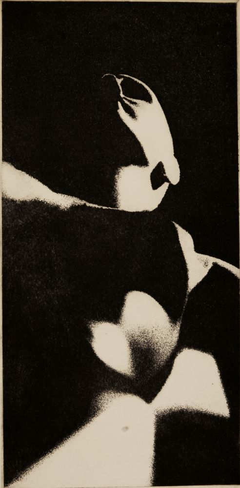 Fractured Mannequin, 1965  Photo etching aquatint 19 1/2 x 9 inches