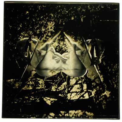 Figure Foliage #2, 1969