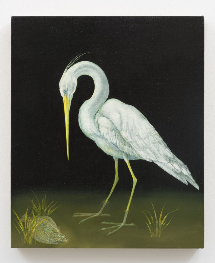 Flounder and Heron, 2015