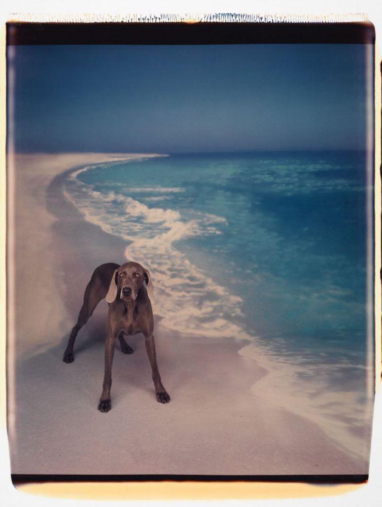 Beach Landing, 1992