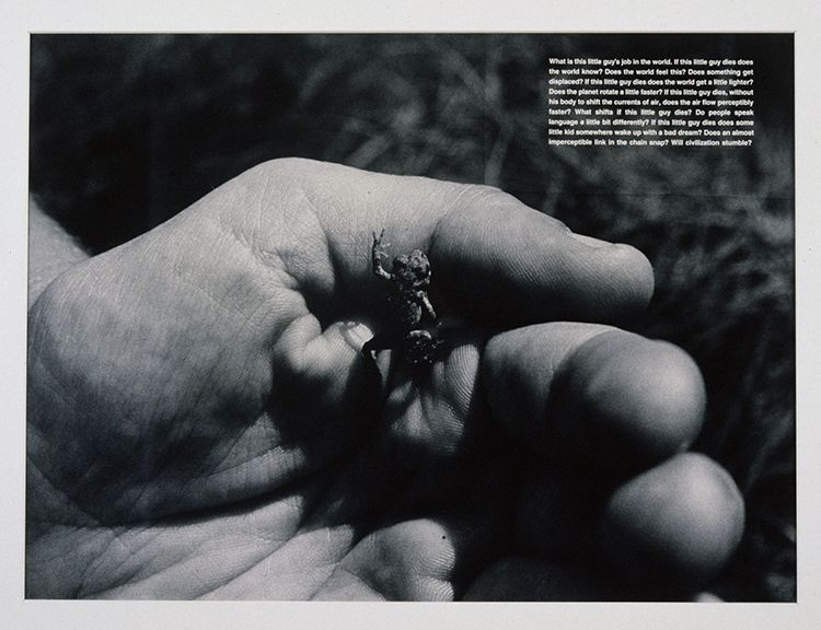 David Wojnarowicz, What is this little guy's job in the world, 1990
