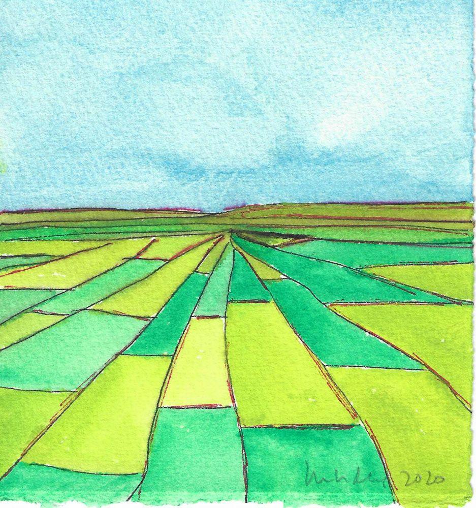 Image of Fields II