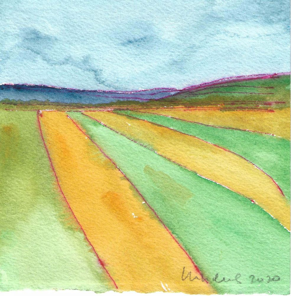 Image of French Fields X