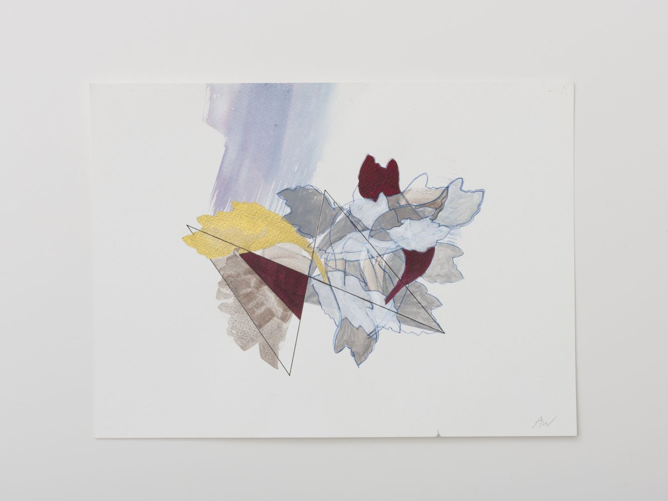 Image of Acanthus Drawing #6