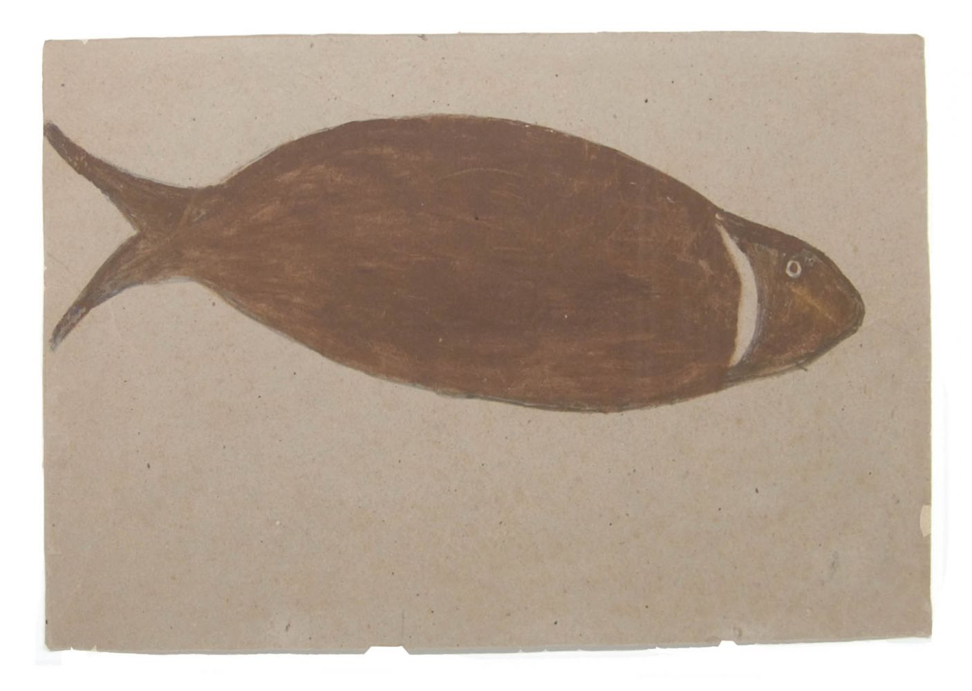 Image of Big brown river fish