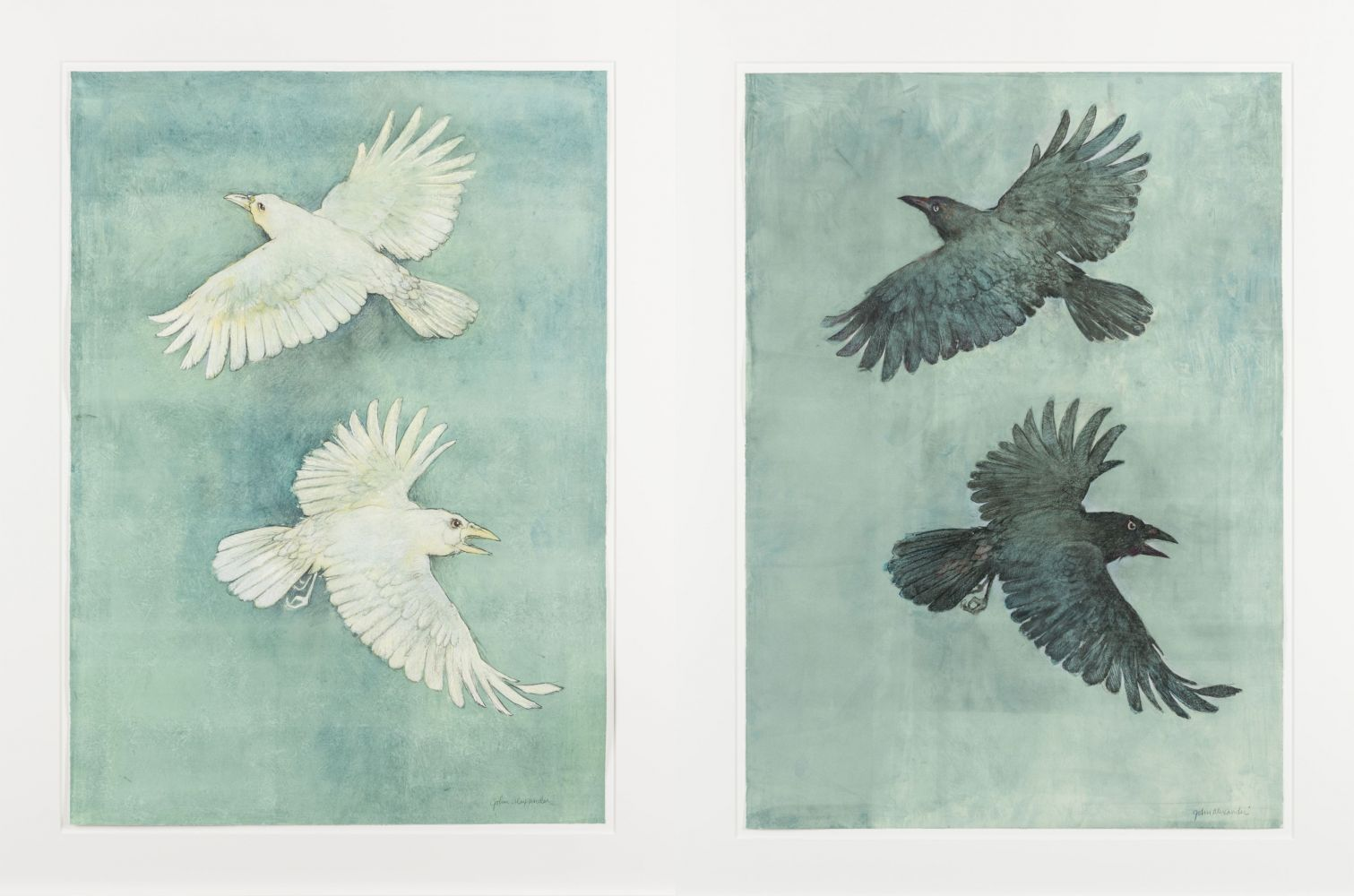 John Alexander  Albino Crows and Crows in a Fog, 2012  pair of monotypes from steel and aluminum plates with hand-coloring  paper: 36 x 25 1/2 inches  frame: 43 x 32 inches  both signed bottom right front  Print Studio: Pace Prints  $30,000