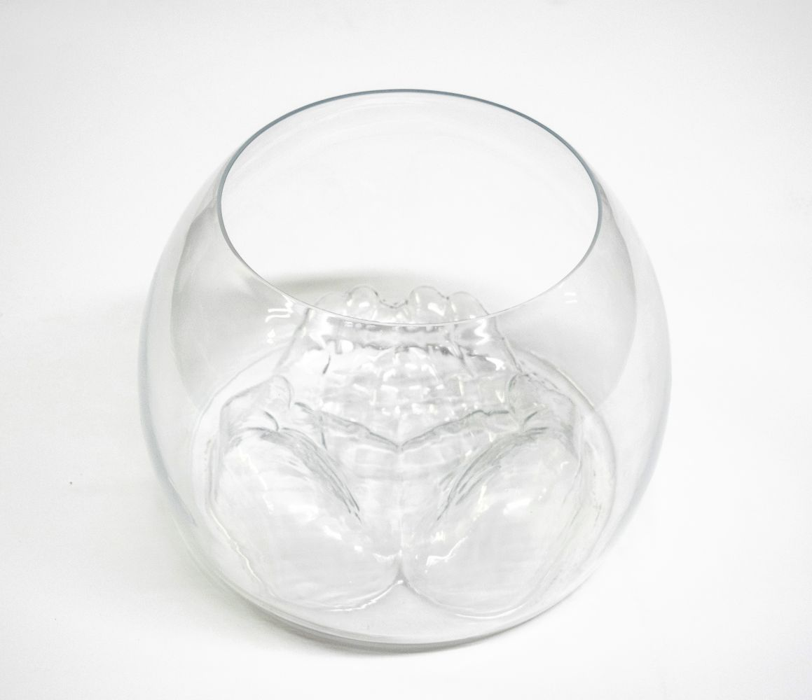 Do-Ho Suh Untitled (Glass Bowl)