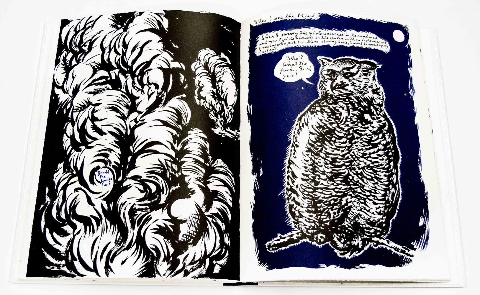 Raymond Pettibon Plots on Loan, 2001