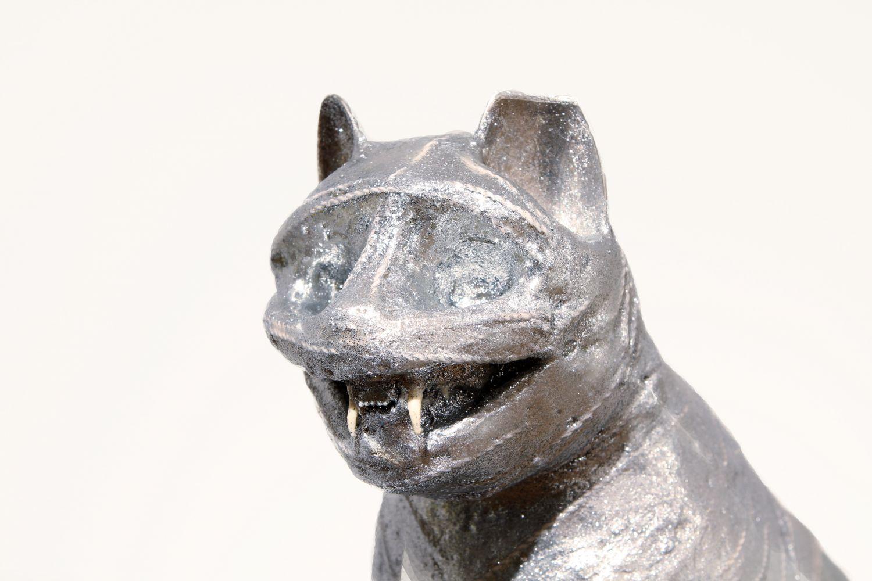 Mummified Cat II