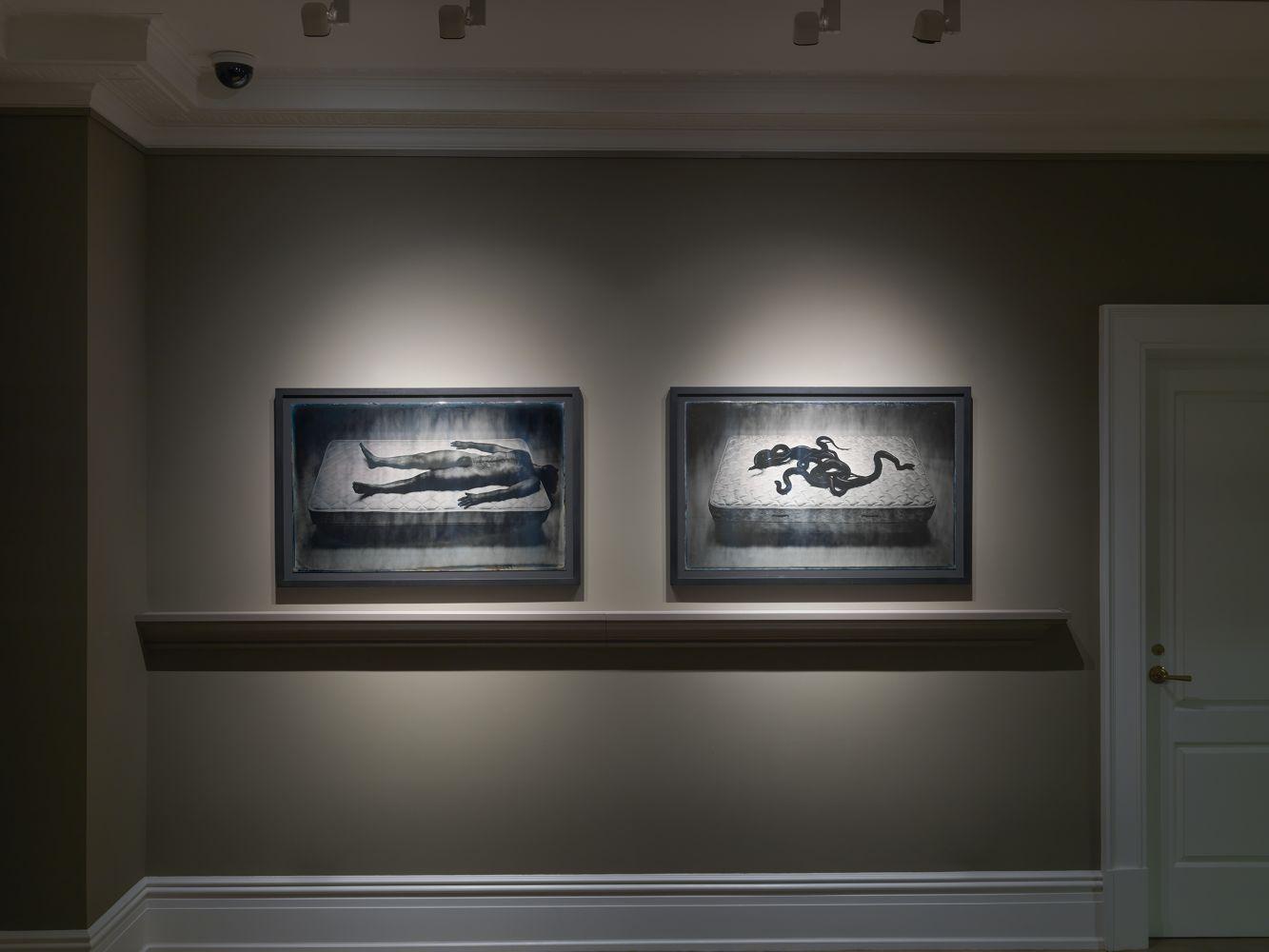 Adam Fuss Daguerreotypes The Womb of Pre-Raphaelite Imagination