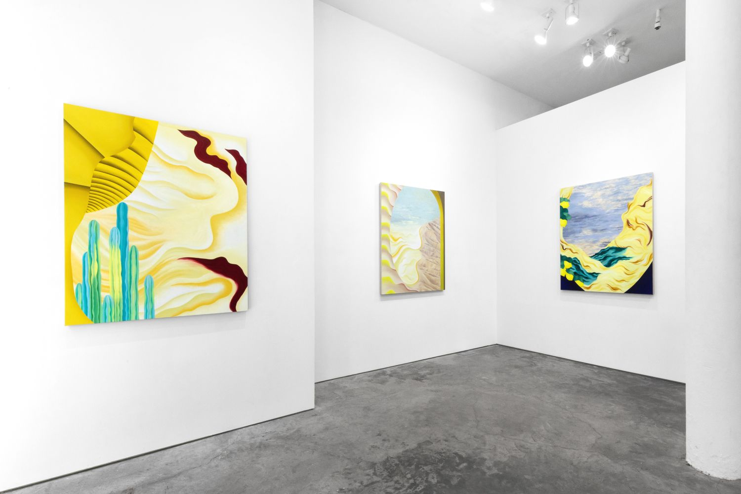 Joani Tremblay: The whole time, the sun - install view