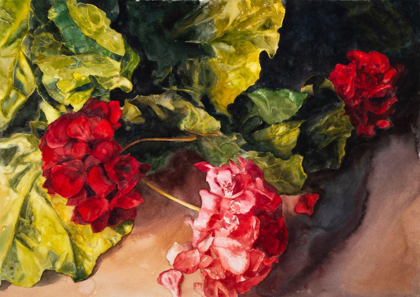 "Eileen Goodman, Geranium and Leaf Greens 29"" x 41""  Watercolor"
