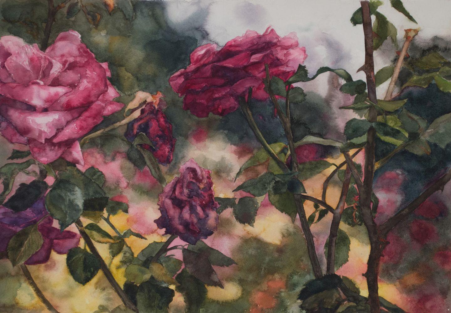 "Eileen Goodman, Roses In Front  20.75"" x 29""  Watercolor"