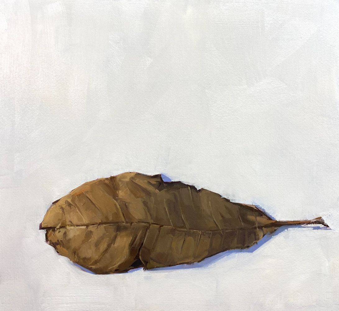 Jeff Reed, Magnolia Leaf, oil on panel, 11 x 11 inches