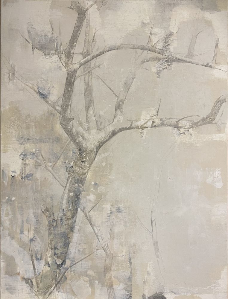 """Dale O. Roberts, Elegant Appendages 14"""" x 10.5""""  Silverpoint And Wash"""