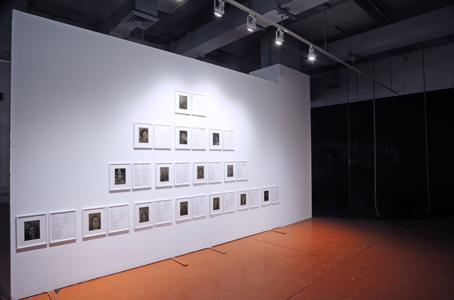 Zia Palmer Women of The Same Blood, 2020 Tintypes and printed interviews All 19 x 11 inches