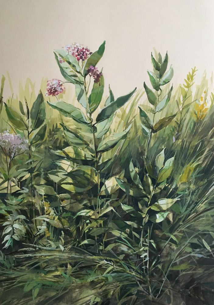 """Wildflowers 22"""" x 15""""  Watercolor On Buff Paper"""