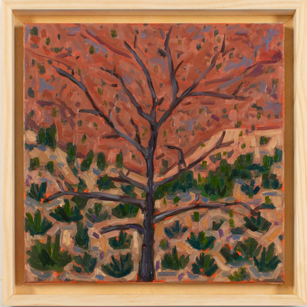 """Tree and Canyon  12"""" x 12""""  Oil On Canvas"""