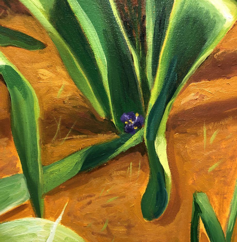 Allium (Detail 1)