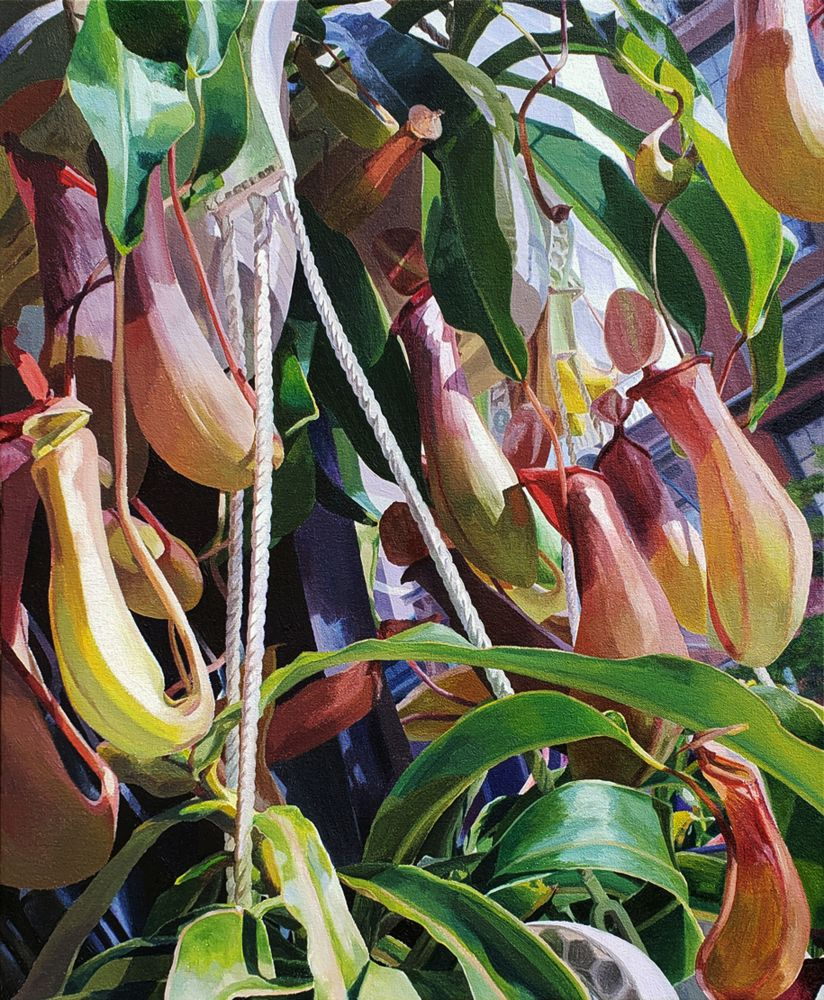 "Potted Pitchers  25"" x 21""  Oil On Canvas"