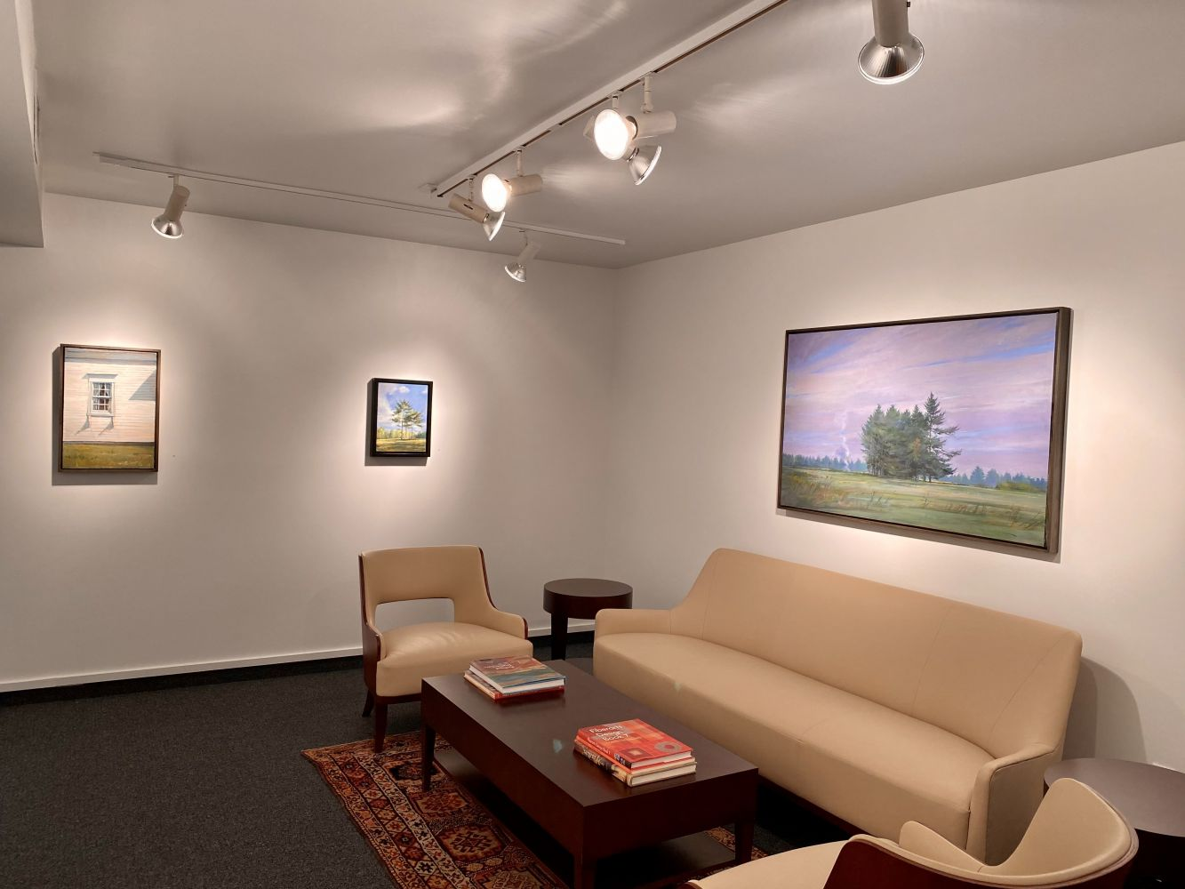 Douglas Martenson: Inside Looking Out Installation Shot, Gallery 3