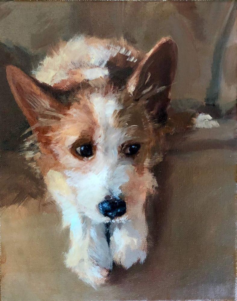 """Christina Leone, Squirrel 10"""" x 8""""  Oil On Canvas"""