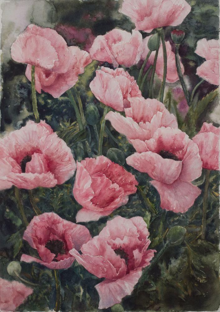 """Eileen Goodman, Oriental Poppies 29"""" x 20""""  Watercolor"""