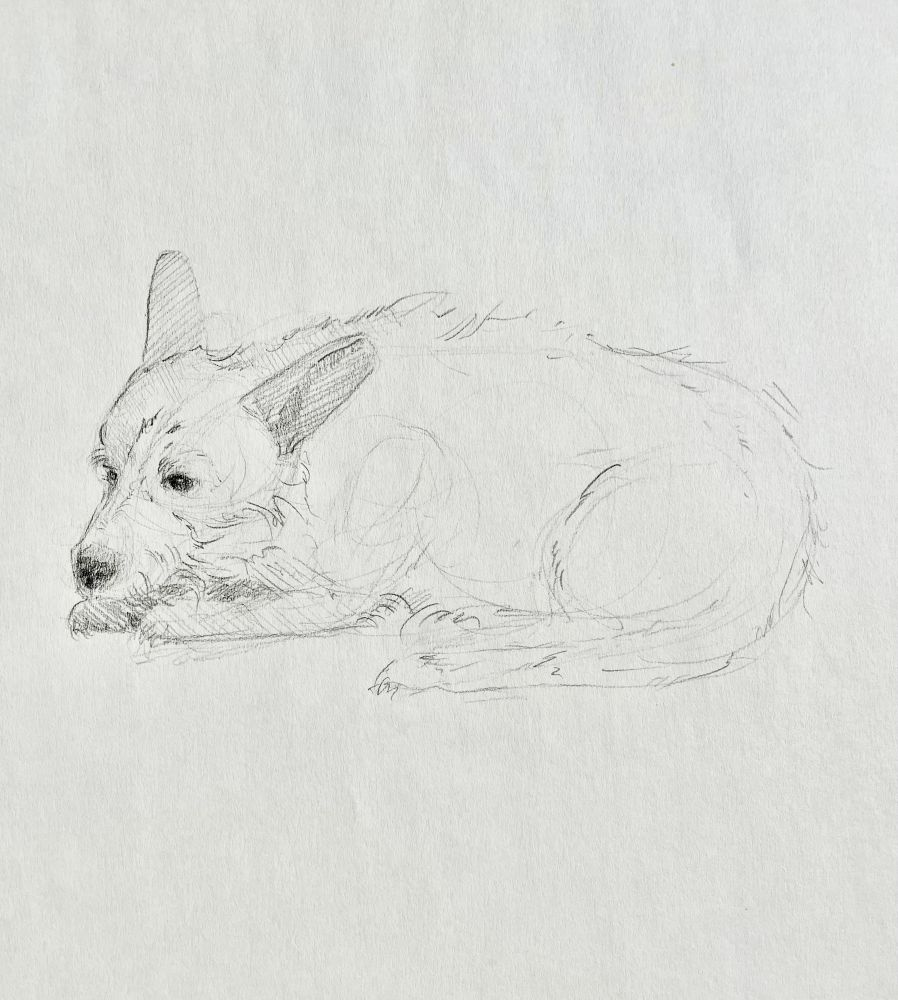 "Christina Leone, Sketch 2  8"" x 10.5""  graphite on paper"