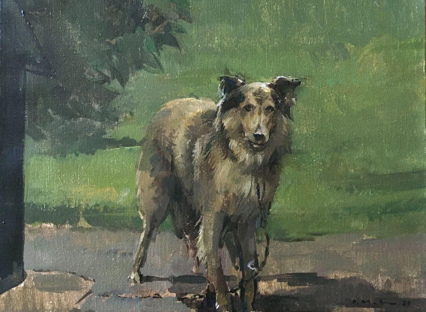 "Douglas Martenson, Lassie  12"" x 16""  Oil On Linen"