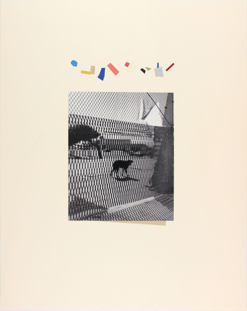 John Gossage, Untitled (Distraction), 1996