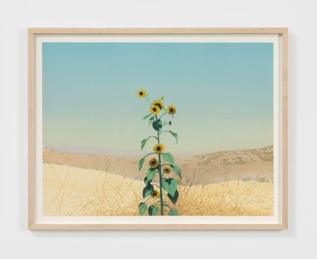Jake Longstreth Untitled, 2020 Oil on watercolor paper 15 x 20 in 38.1 x 50.8 cm (JLO20.026)