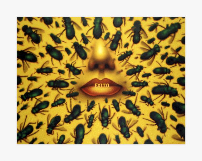 Ed Paschke Success, 2002 EPAS029