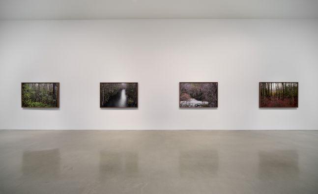 Catherine Opie - Rhetorical Landscapes