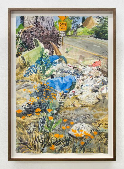 Sterling Wells, La Brea Poppies, 2020