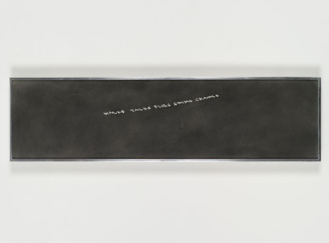 Ed Ruscha Walks Talks Swims Flies Crawls, 1973