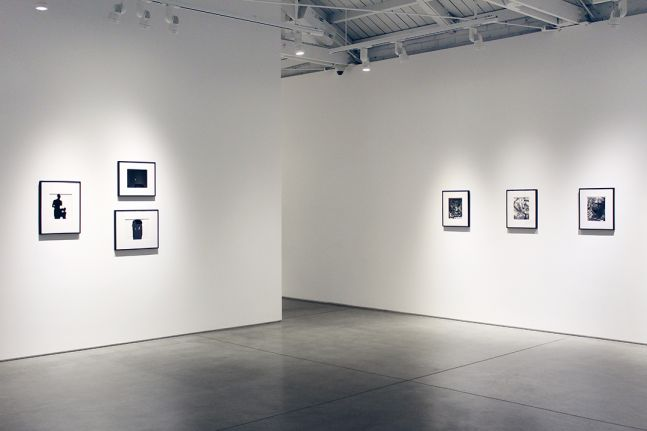 Harry Callahan & Robert Heinecken Figures in Transformation​, installation view
