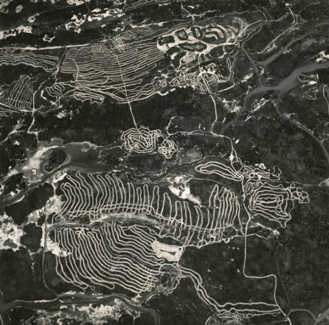 Waterfowl Nesting Site and Wetland Area Restoration near Sutter Buttes, California, 1993