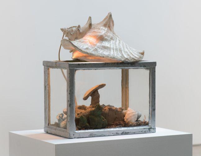 Paul Thek, Fish Tank, 1969