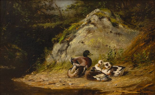 Arthur Fitzwilliam Tait (1819–1905), Ducks Sunning, 1882, oil on canvas, 10 x 14 in., signed and dated lower right