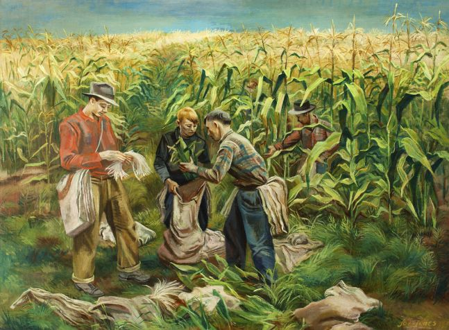 Joe Jones (1909–1963), Cornfield, 1941, oil on canvas, 30 1/8 x 40 1/8 in., signed and dated lower right: Joe Jones 1941