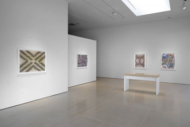 Installation view, Gates of Cilicia, McClain Gallery, Houston, TX, February 2021