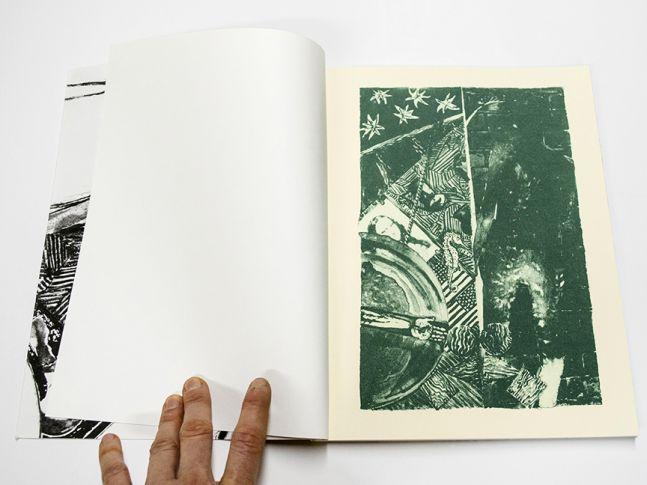 Jasper Johns: The Seasons (book)