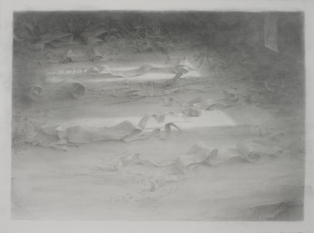 Michèle Fenniak, Archive, 2018, graphite on paper, 22 1/4 x 30 inches