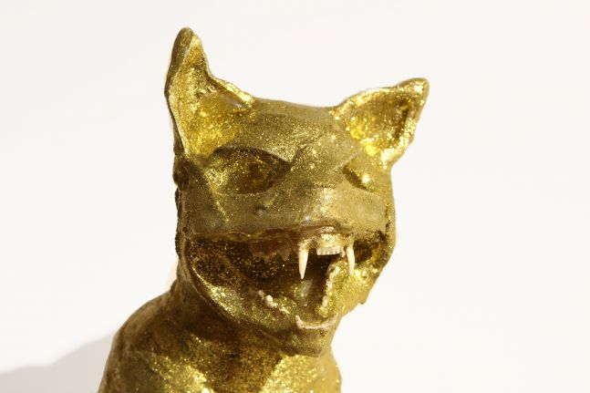 Mummified Cat I